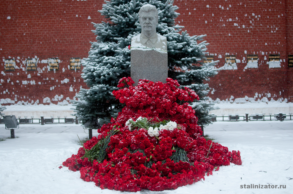 http://stalinizator.ru/wp-content/gallery/2gvozdiki-7/DSC_6309.jpg